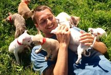 Who Rescued Who / Animal Rescue & Training / by Lisa Padgett