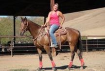 OTTBs In the News... / by CANTER CALIFORNIA