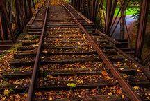 Trains & Tracks / by Carlyn