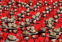 A sea of red... RCMP !!! / The Royal Canadian Mounted Police  A Canadian Icon! / by Louise Villeneuve