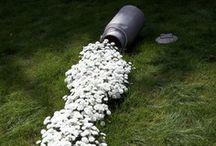 Gardening / by Rebecca Brown