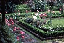 Formal Gardens / by Carolyn Prescott