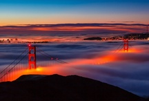 I Left My ♥ in San Francisco / by Amy Tomlinson