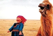 Laughing for the Soul / Smile and carry on ... :) / by Helena Vieira