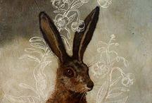 Red Rabbit / by Bill Cash