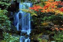 Waterfalls, Rivers, Lakes, Streams / by Cindy Gardner