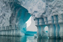Ice, Icebergs, Glaciers / by Cindy Gardner