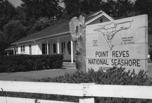 Historic Photos / by Point Reyes National Seashore Association