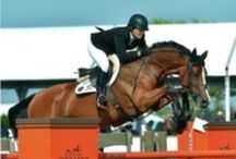 Dressage and Jumping / by Priscilla Durling Linares