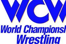 Pro wrestling 4 Life! / WCW. WWF. ECW. AWA. TNA. WCWA / by Nathaniel T