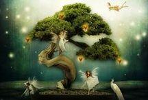 Fairies / by Carolyn Miller