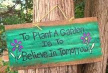 Gardening/Plants / by Yasmeen K