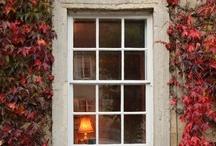 Windows / by Lisa Talbot