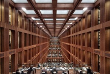Architecture-libraries / ...how many books does it take to kill a man... / by Jan-Peter Semmel