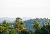 Scenes / Photos from around Antietam Overlook Farm   / by Antietam Overlook Farm Bed and Breakfast