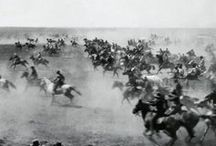 """Go West / """"What is life? It is the flash of a firefly in the night…the little shadow which runs across the grass and loses itself in the sunset."""" —Chief Crowfoot of the Blackfoot Confederation, 1890 / by Stardust Garland"""