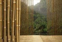 Arquitectura vs Nature / by Pedro Endara