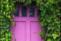 Shut the Door! / by Becky Williams