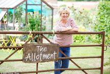 Allotments and kitchen gardens / Veg fruit and herb growing - potager gardens / by Wedding Flower and Event Hire Yeovil