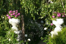 Gardens / by Emeterio Mantecon Siller