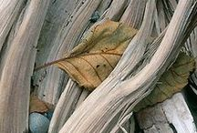 patterns, lines, textures and wonderful repetitions / magnificent eye candy! / by Suzi
