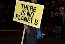 Environmental advocacy / by Sophie Richard-Ferderber