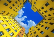 Blue and Yellow / by Gerardo Lara
