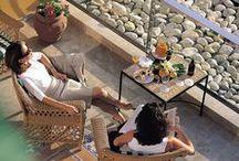 El Hotel Jardín Milenio 4*  / El Hotel Jardín Milenio, cuenta con 71 cómodas habitaciones y está rodeado de un gran jardín mediterráneo. Una de las mejores opciones para disfrutar Elche y su entorno, a sólo 10 minutos del centro de la ciudad.  / by Huerto Del Cura