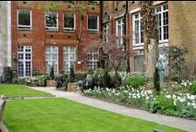 St James's Church Garden / by BAFTA 195 Piccadilly