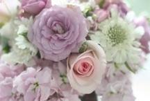 Beautiful Bouquets / by Karen Yap