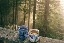 Camping / by Nikki Brown