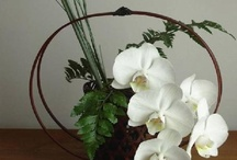 """Ikebana--Less is More / Some of these arrangements really """"push the envelope"""" into contemporary, creative, and even playful, designs. / by Jackie Naiditch"""