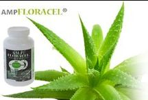 AMP Floracel / A.M.P Floracel is an all natural, non toxic and organic supplement derived from the aloe vera plant that has been successfully helping people since 1996 suffering from any type of digestive and auto-immune diseases such as; Crohn's, Colitis, Diverticulitis, IBS, Acid Reflux and many more.   A.M.P stands for Aloe Mucilaginous Polysaccharides - The Healing Molocule within the Aloe Vera Plant. / by A.M.P. FLORACEL®