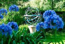 ~ enchanting gardens ~ / by Martha Parkinson