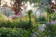 Garden / by Peggy Enderle
