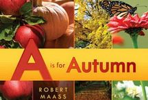 (Kids) Autumn activities for my munchkins / by Our Little House in the Country