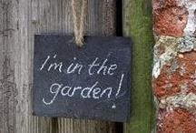 I'm in the garden / by Rachel