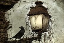 Magical / by Lindsay J. Pryor