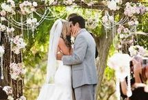 Shannon & Sean Tie the Knot ~ Ideas / Our Spring Backyard Wedding ~ Rustic, Wine Theme / by Shannon Reed