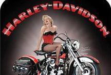 Harley Davidson / by Sharon K