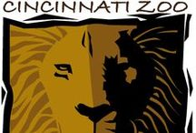 NKU Loves the Zoo / The NKU Young Alumni Association threw its first Black & Gold Bash at the Cincinnati Zoo / by NKU Alumni Association