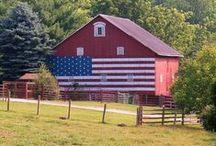 Barns / by Janet Klingler