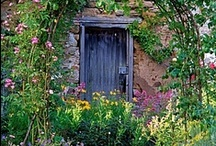 Doors / If you know how to look and learn, the door is there and the key is in your hand. / by Kathi Waters