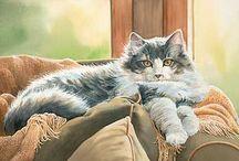 Cat art / by Josilin Rose