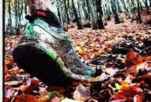 Mud-Worthy / by Brooks Running