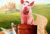 Superstar Swine / by Oink, Oink, Mini Pigs!
