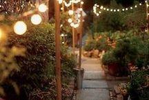 Transform my yard / Ideas to transform a yard / by Rhonda Roberts