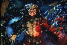 Yautja - The Predator / by Tom Brace