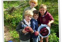 School Garden Funding / by Gardening With Kids/ KidsGardening.org