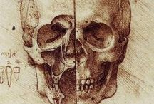 PAINT - Leonardo's drawings / by guido frilli
